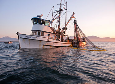 Stories of Alaska told by our local commercial fisherman