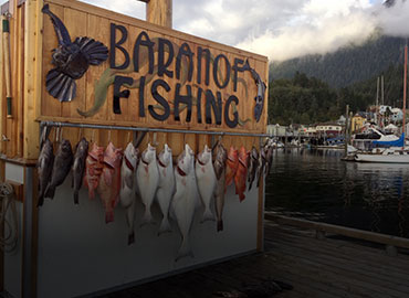 Enjoy what Alaska Fishing has to offer with our Cook your Catch Excursion
